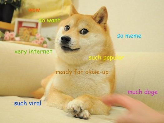 tech meme