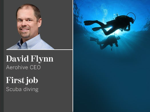 David Flynn, Aerohive CEO