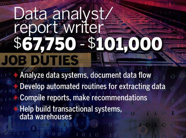 Data analyst/report writer