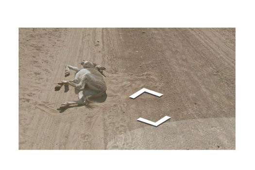 HIT (for a miss): Street View Donkey