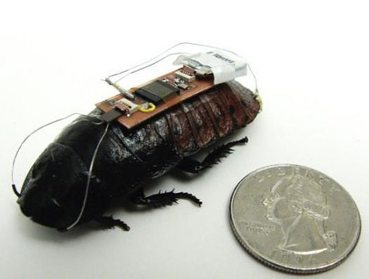 Long lasting Cockroach-bot