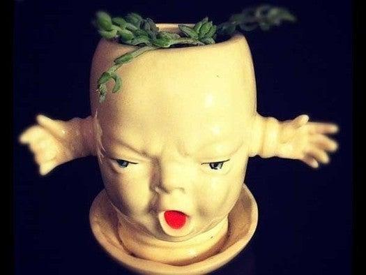 freaky flower pot