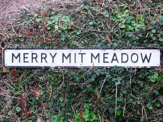Merry Mit Meadow
