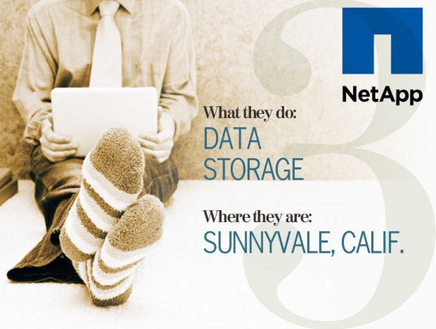 NetApp, telecommuting