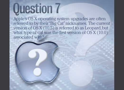 apple_quiz_slide14-100351244-orig.jpg