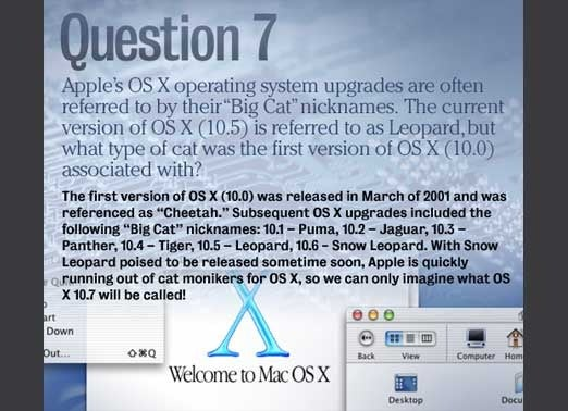 apple_quiz_slide15-100351245-orig.jpg
