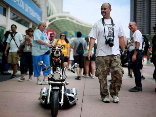 Mark Shaffer walks with Chopper The Biker Dog