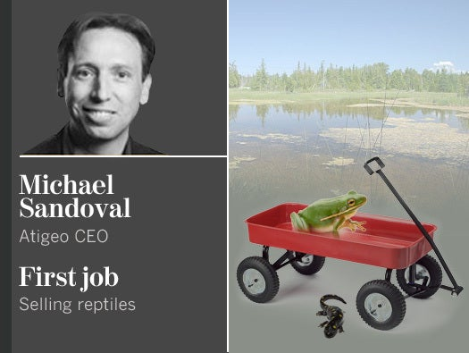 Michael Sandoval, Atigeo CEO