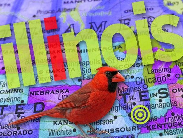 Illinois, IT jobs