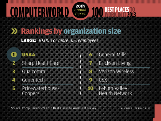 Rankings by size: Top 10 large organizations