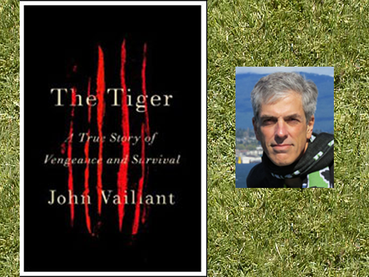 The Tiger book cover