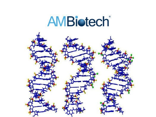 AM Biotechnologies DNA Sequence Analysis Solution