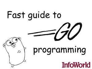 Fast guide to Google Go programming
