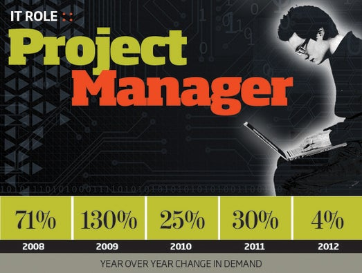 IT Project Managers