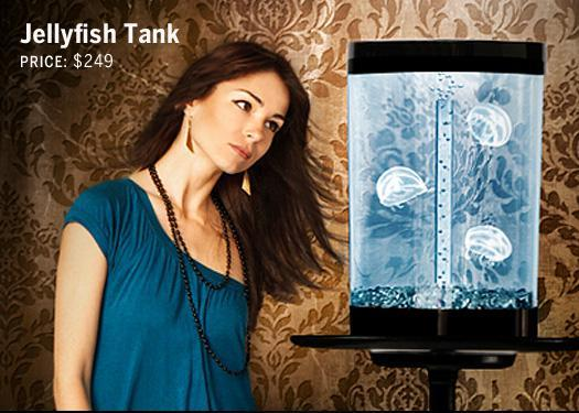 Jellyfish Tank: