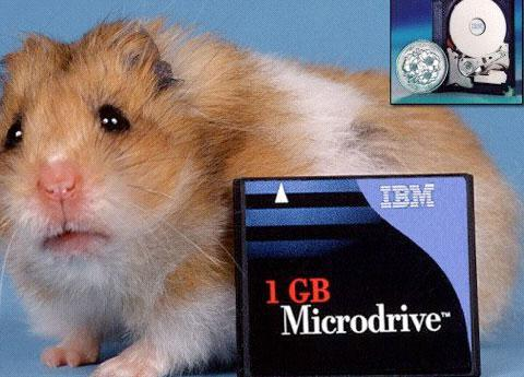 Removable Storage for Your Rodent?