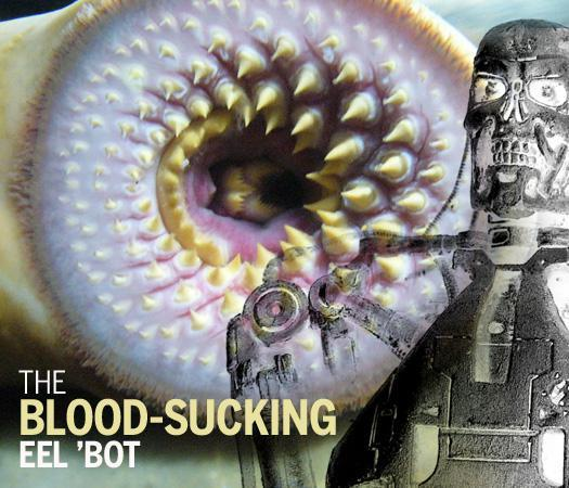 The blood-sucking eel \'bot