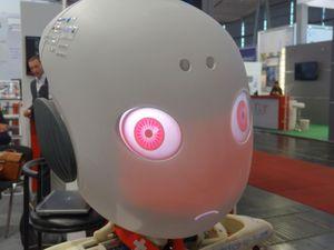 Roboy angry robot